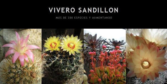 VIVERO SANDILLON