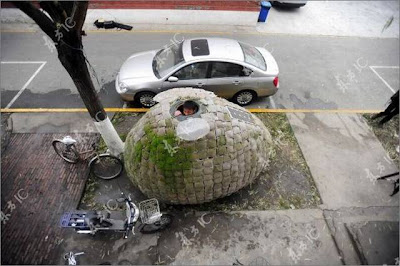 Amazing Egg-House Design By a Chinese Designer Daihai Fei Seen On  www.coolpicturegallery.us
