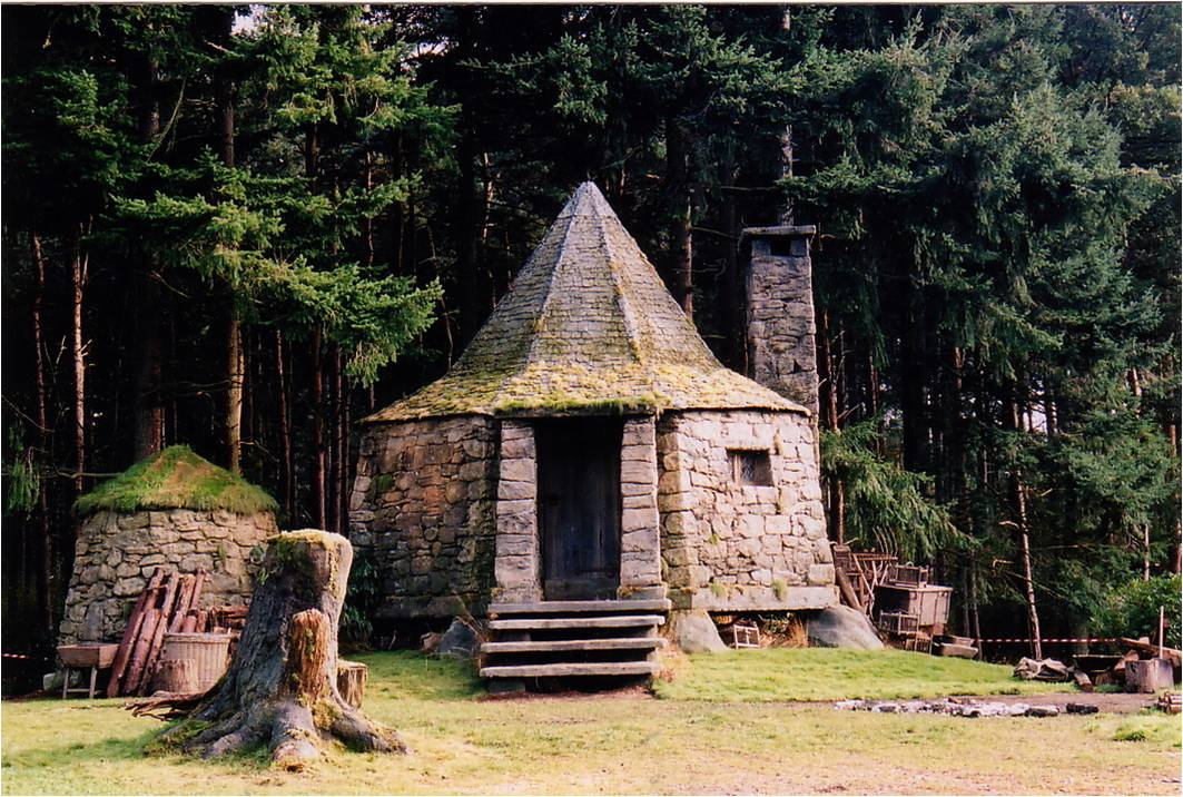 2w14 hagrids hut of facts What house was hagrid in