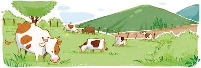 Chhuy-Ing IA cows