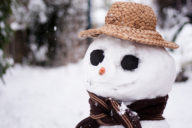 snowman with coal eyes and a hat