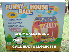 FUNNY BALL HOUSE