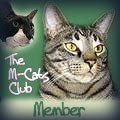 M-Cats Club
