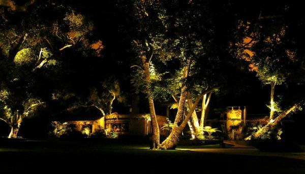 iluminacao jardim verde:Arquitetura de Iluminação: Iluminação de Jardins