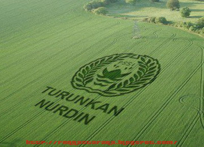 Crop Circle - Turunkan Nurdin