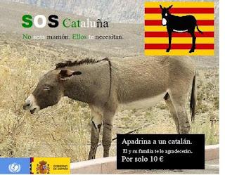 Cultura catalana Foto+catalan