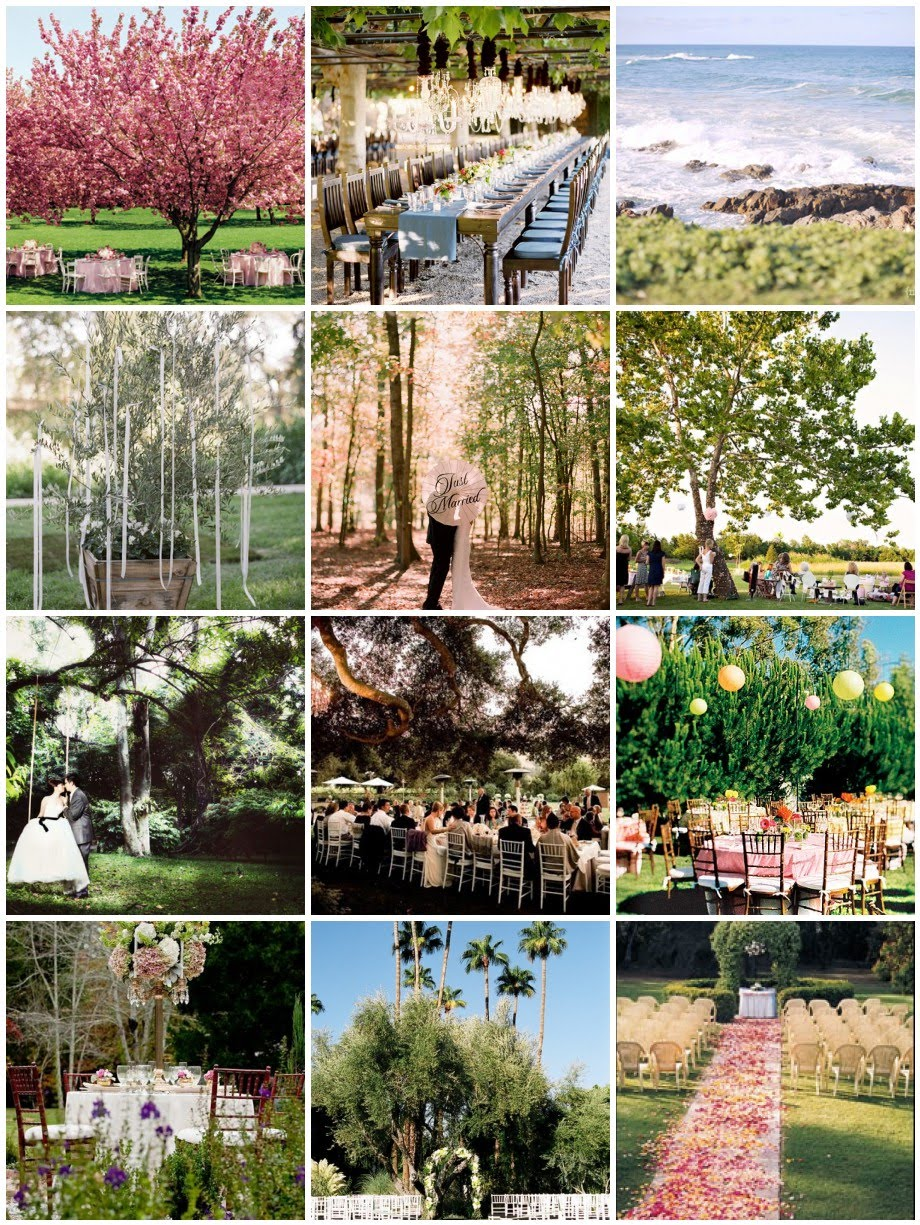 Diy Backyard Wedding Ideas