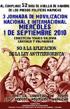 3era Jornada de Movilización Nacional e Internacional por los Presos Políticos Mapuches