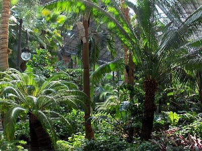Es madrid no madriz la espera en la estaci n de atocha - Jardin tropical atocha ...