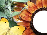 http://ladymaryscrapart.blogspot.com/2009/04/qp-19.html