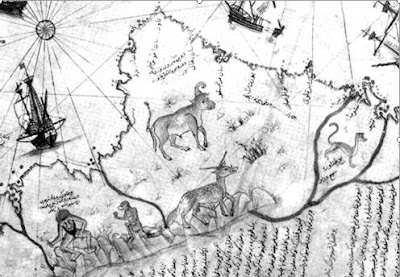 Cattle - Detail Piri Reis map