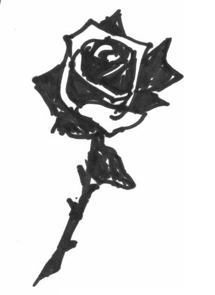 Dedicated to my black rose I