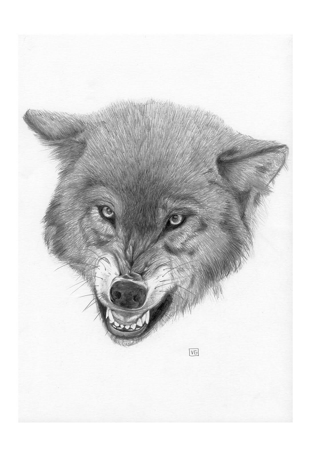 [10x15-Wolf-levels+copy.jpg]