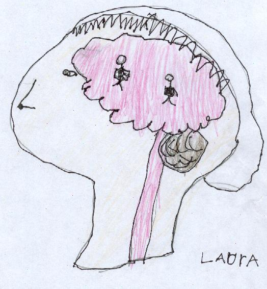 http://4.bp.blogspot.com/__wgTdCCrfeY/TJiyyDNRpOI/AAAAAAAAGbQ/MpXKpkAlebk/s1600/Laura_-_brain.JPG