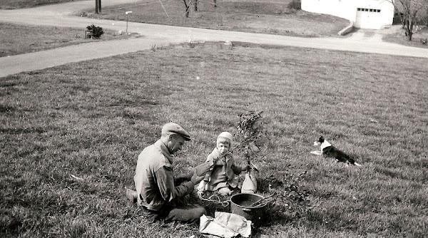 1954 Spring