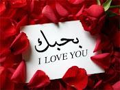 بحبك يا مصر يا أحلى بلد فى الدنيا