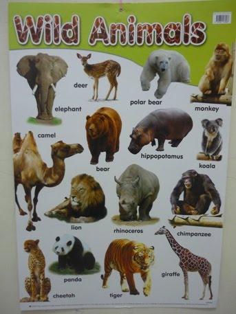 WARNING!!10 Jenis Hewan paling terancam kepunahan di du