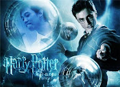 When Hari Lumos fuse with Harry Potter,,!!