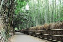 Kyoto-Arashiyama