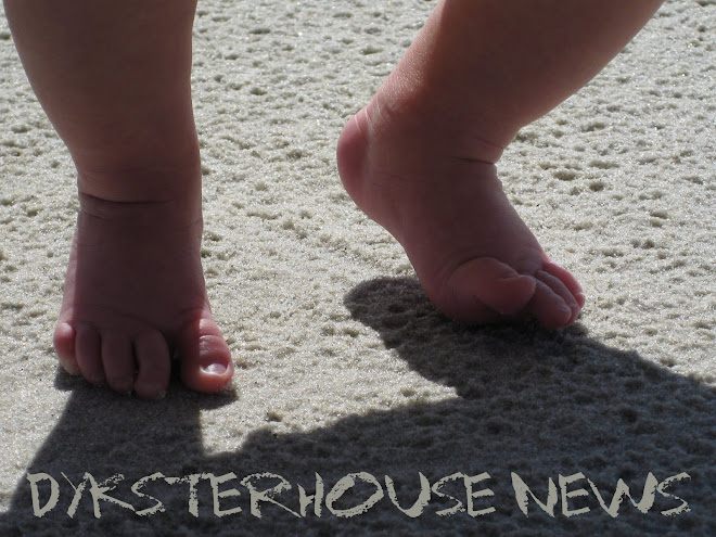DYKSTERHOUSE NEWS