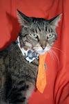 Necktie Model