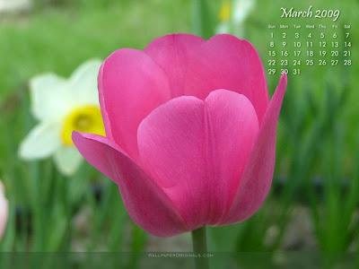 calendar 2009 wallpaper. March 2009 wallpaper