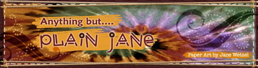 Anything but...Plain Jane