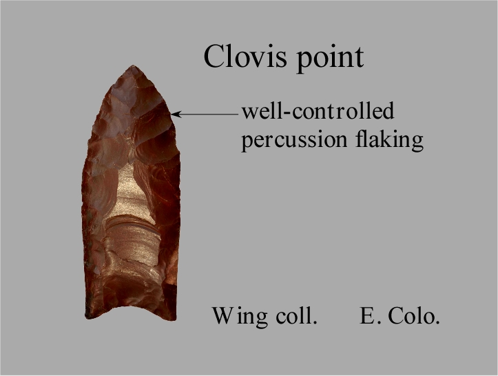 clovis culture dating They used luminescence dating,  artifacts in texas predate clovis culture by 2,500 years, new study shows sciencedaily retrieved july 21, .