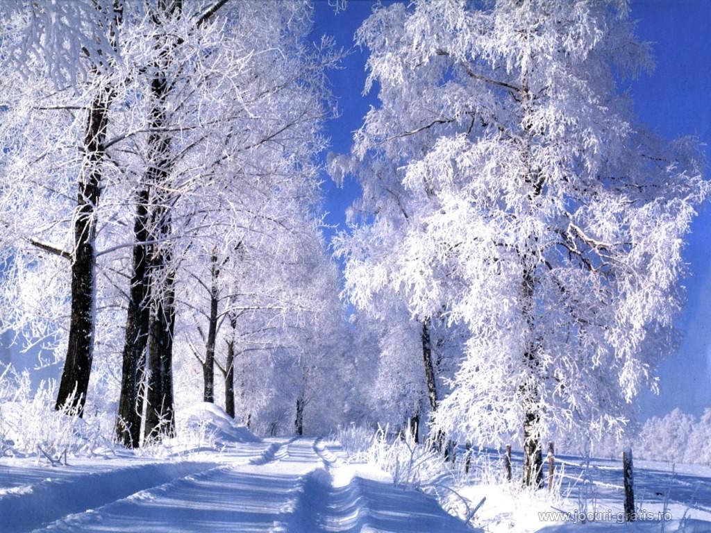 http://4.bp.blogspot.com/_a2qJSNVc_lw/TP9N5MSIhcI/AAAAAAAAB3Y/BU7P_RQDP2U/s1600/poze-iarna-de-vis_1024x768.jpg