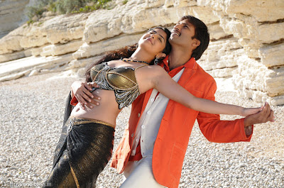 Photos Wanted Hot Romantic Stills Deeksha Seth Gopichand release images