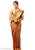 Anushka Shetty in Silk Saree for Chennai Silks Photo Shoot-thumbnail-5