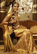 Anushka Shetty in Silk Saree for Chennai Silks Photo Shoot-thumbnail-3