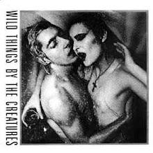 Siouxsie+Budgie