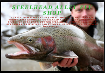 SAO Fly Shop