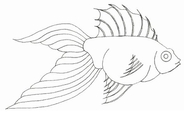 Dibujos para colorear pez para colorear - Dessin poisson facile ...