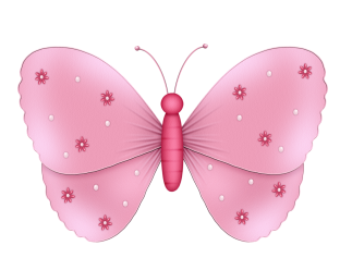 Las Mariposas - Lepidópteros