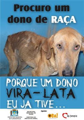 Campanha contra o abandono de cães