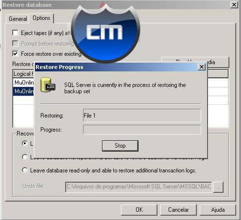 Configurar SQL Server13