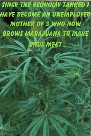 http://4.bp.blogspot.com/_a7jkcMVp5Vg/Sr7BF4L0imI/AAAAAAAAJ9A/FeMmUtcO-rs/s1600/weeds.jpg