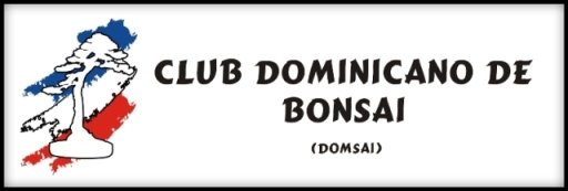 CLUB DOMINICANO DE BONSAI
