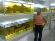 Armando Moscoso Rada