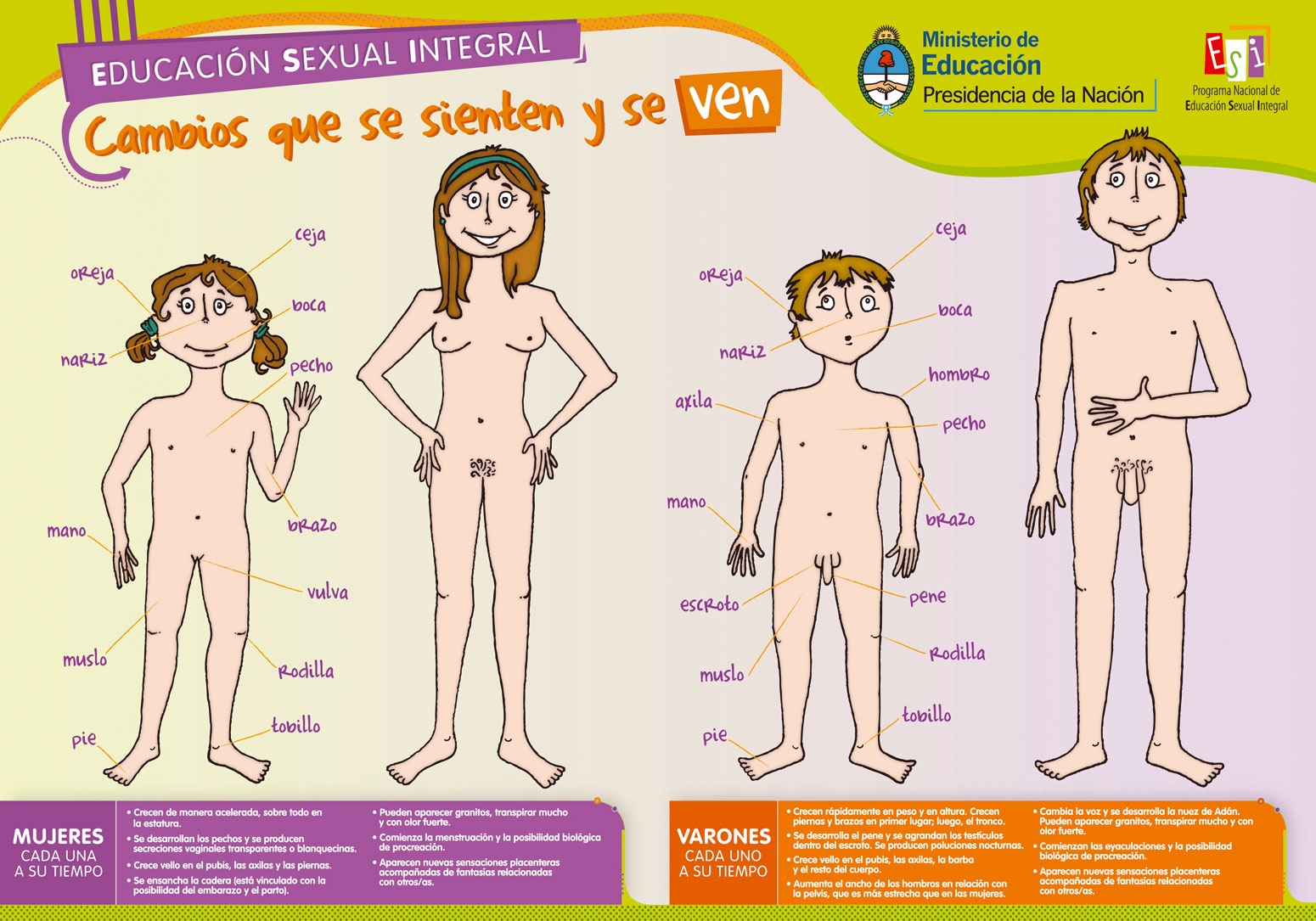 vida familiar y educacion sexual: