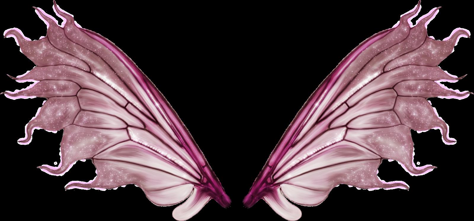 asas de anjo ficam - photo #33
