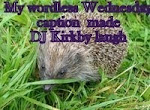 Wordless Wednesday with DJ Kirby