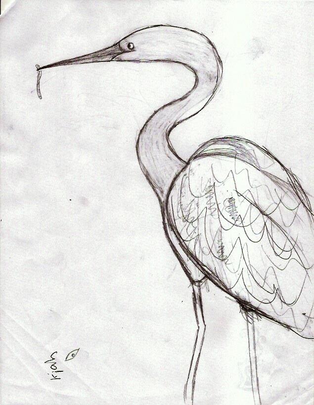 Line Drawing Natural Forms : Natural bridges sketchers weeks proportions contour