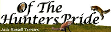 Of The Hunters Pride Jack Russell Terriers
