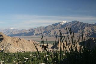 Ladakh Activity