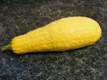 First Yellow Squash