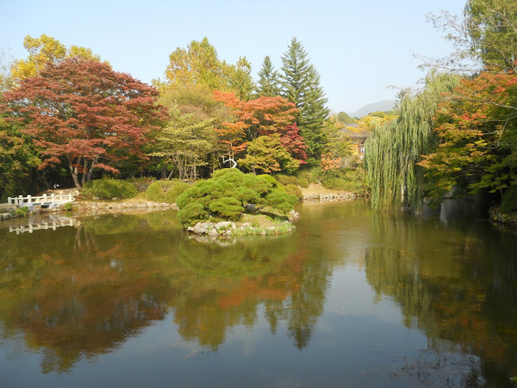Korea in the fall!  WOW!