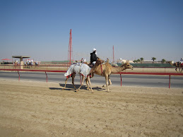 Sheehaniya Camel Race Track